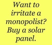 monopolist