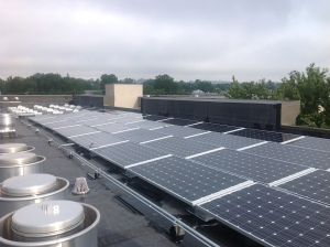 Solar array installed by Secure Futures for the Harrisonburg Redevelopment and Housing Authority using a CSGA. Photo courtesy of Secure Futures.